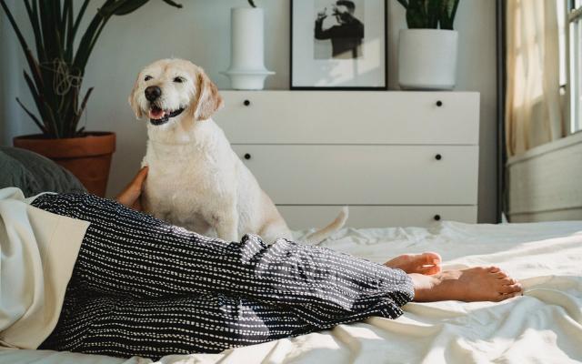 Кой е най-ефективният начин да задържите топлината във Вашия дом?